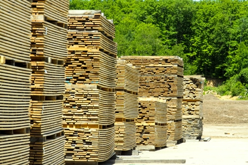 Stacks of Cut Lumber
