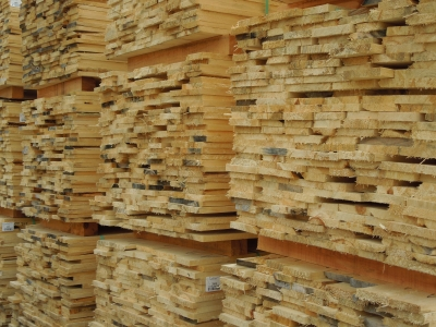 White Birch Wood Lumber Suppliers