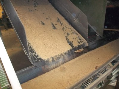 Wood Byproducts for Sale | Lumber bark, sawdust, shavings & hog fuel