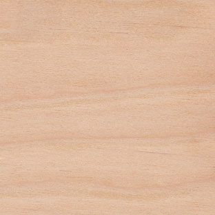 yellow birch lumber